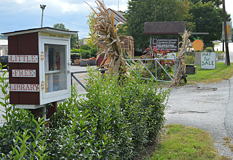 Little Free Library as seen going south.